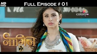 Naagin 2 - 8th October 2016 - नागिन 2 - Full Episode (HD)