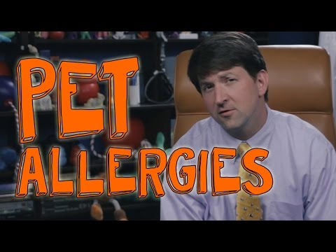 5 Simple Tips for People With Pet Allergies