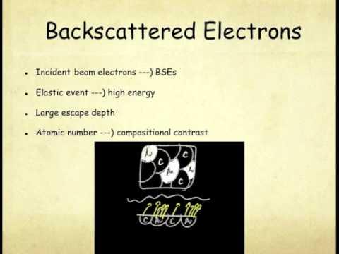 RAIN: Introduction to Scanning Electron Micrscopy (SEM)