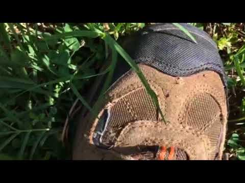 Easy way to kill ticks in your yard.