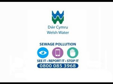 Sewage Pollution - Welsh Water