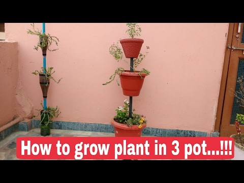 How to make flower tower at home, How to make vertical garden at home, The One Page 3 Pot special