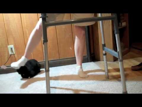 Hip Abduction - Standing