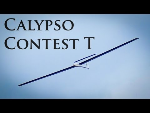 Calypso Contest T on Selsley Common, UK