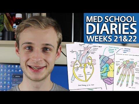 Year 1, Weeks 20 & 21 Graduate Entry Medicine @ Warwick Medical School | PostGradMedic