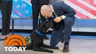 TODAY Puppy Charlie Shows How He'd Get Help In An Emergency | TODAY