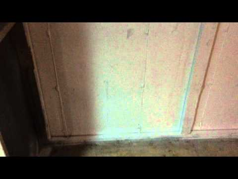 Mold Disaster In Basement Professionally Remediated Glendale Heights, IL