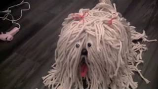SHAGGY DOG DIY Valentine's Day box