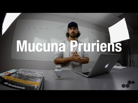 What are the benefits of Mucuna Pruriens?