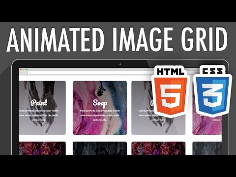 Responsive Animated Image Grid HTML5 CSS3   XO PIXEL