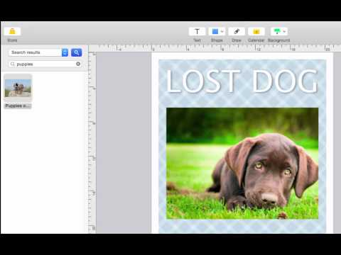 How to Make a Personalized Flyer Using Publisher Plus for Mac