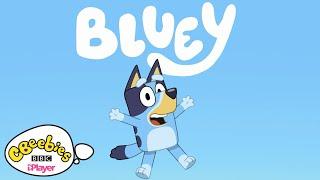 Bluey   Theme Song   CBeebies