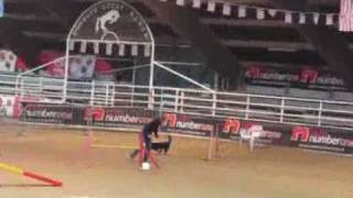 agility Voghera, Beck's Hill Fast and Furious - Bi