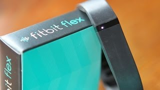 Review Fitbit Flex Fitness Band