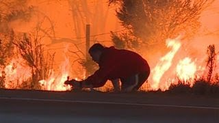 Driver pulls over to save rabbit as blaze rages by highway