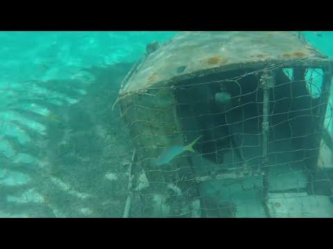 Disney Fantasy Cruise Castaway Cay - Snorkeling Serenity Bay - Pelican Plunge Water Slide