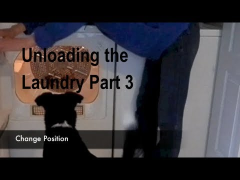 Unloading the Laundry (Dryer) for Assistance Dogs Part 3