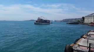 19 Mayıs Beşiktaş Kutlaması