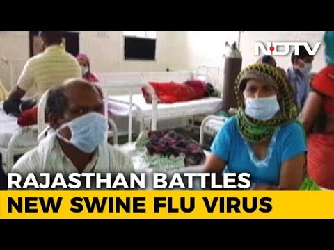 Swine Flu Cases On The Rise In Rajasthan, New Strain Of Virus Detected