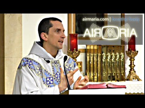 Judge Yourself, Not Others - May 23 - Homily - Fr Matthias