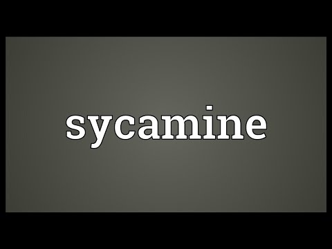 Sycamine Meaning