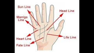 HOW TO READ YOUR OWN PALM LINES
