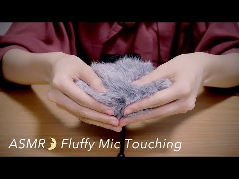 [ASMR] Fluffy Mic Touching (Windscreen) Ear Cleaning, Brushing [No Talking] DR-40