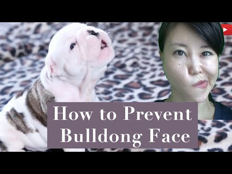 How To Prevent Bulldog Face | Simple Techniques To Keep Your Face From Sagging