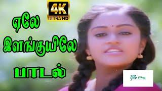 Ele Elanguyile ||ஏலே இளங்குயிலே || S. P. B, K. S. Chithra || Love Duet H D Song