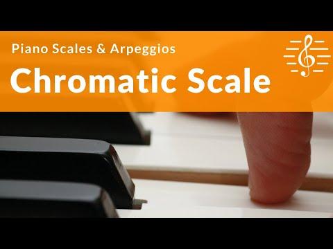 Grade 2 Piano Scales, Arpeggios & Broken Chords - Chromatic Scale on D