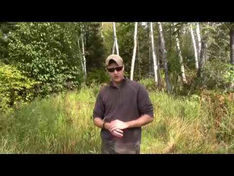 Country Living - How To Make Wilderness Trails!!