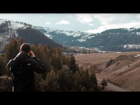 Gavin Forster: A Week in the Wild