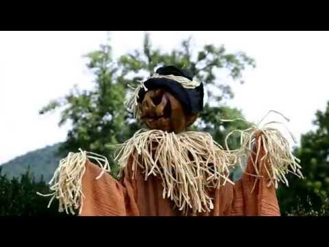 Life-Sized Motion-Activated Halloween Scarecrow SKU#87851- Plow & Hearth