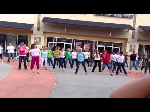 Flash mob in Houston premium outlet 6th April 2013