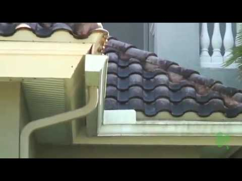Tile Roof Cleaning by Kelly Roofing