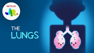 What Are Lungs? 💨 StoryBots: The Human Body for Kids   Netflix Jr