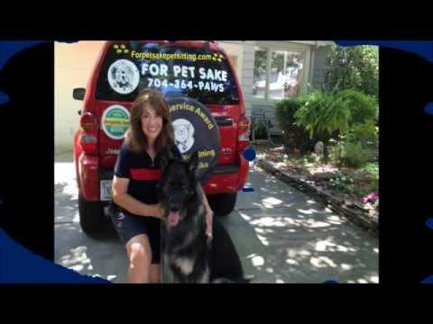 For Pet Sake. Pet Sitting and Dog Walking. Charlotte, NC. Wendy Wilson. Cats, Animals, Dogs