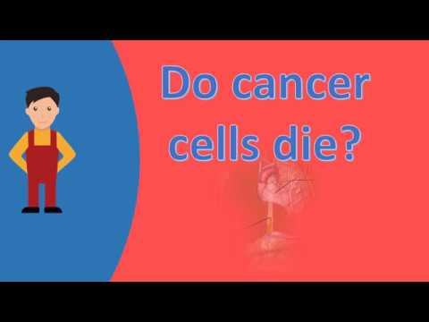Do cancer cells die ?  Health Questions