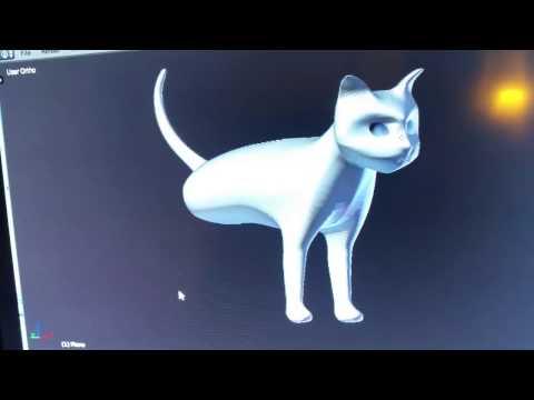 Cat Model in Blender 1st attempt