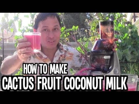 How to Make Cactus Fruit Coconut Milk in the Kuvings Whole Slow Juicer