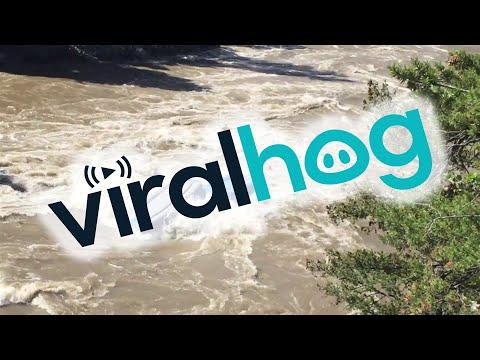Whitewater Rafting Guides Practice Flipping Raft || ViralHog