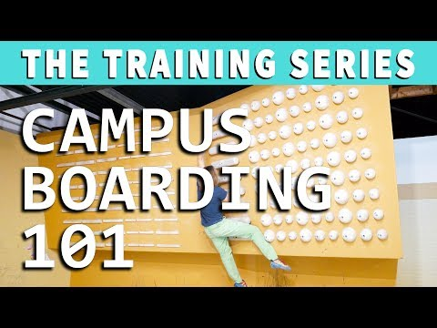 Campus Boarding 101: 4 Exercises to Get Started on a Campus Board