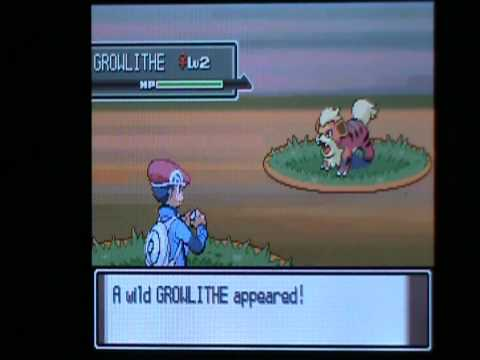 How to catch Growlithe in Pokemon Platinum