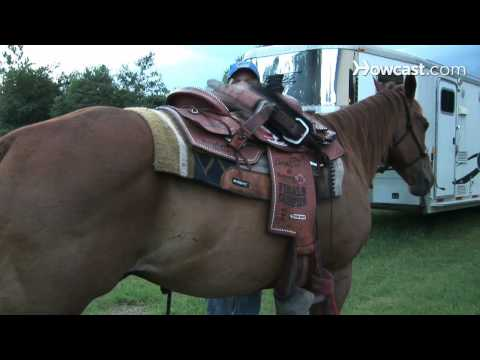 How to Saddle a Horse Western Style