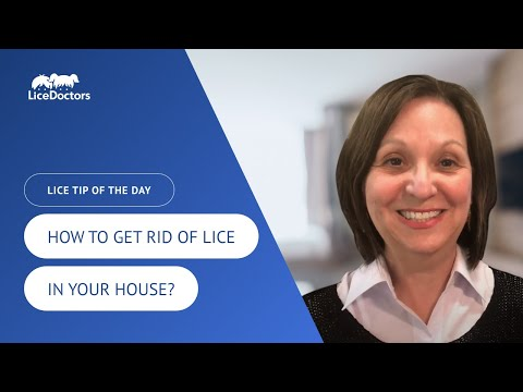 Why you don't need to clean your home if you have lice