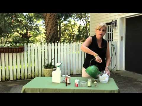 How to Make Homemade, Non-Plant-Killing Pest Repellent : Garden Bug Control