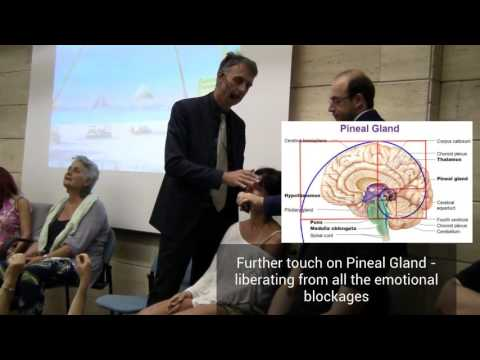 Rapid Non Verbal Hypnosis Induction, Esdaile State, Regression technique, Exercises  & Training