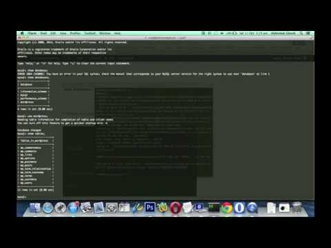 MySQL Server Import in Command Line