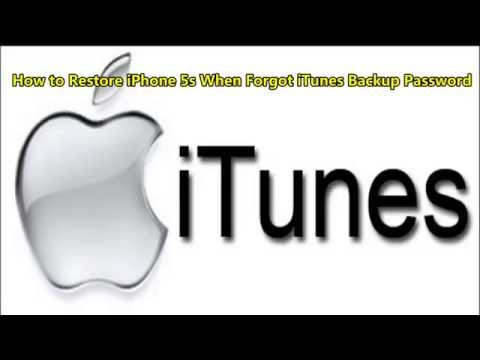 How to Restore iPhone 5s When Forgot iTunes Backup Password