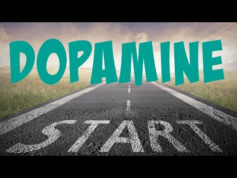 How To INSTANTLY Increase PLEASURE and MOTIVATION    The Power of DOPAMINE